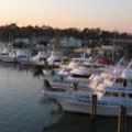 photo of boats docked at rudee inlet